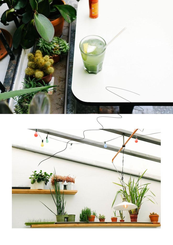 Botaniste blog